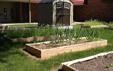West students show their green thumb
