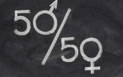 Feminism: a better understanding