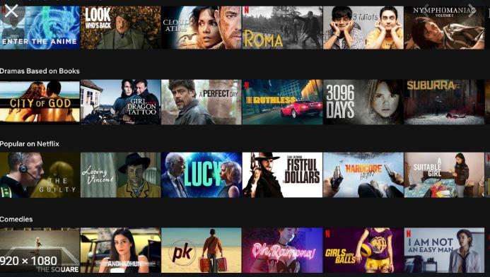 International Films on Netflix